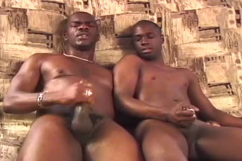 Two enormous dark chaps boneing And sucking