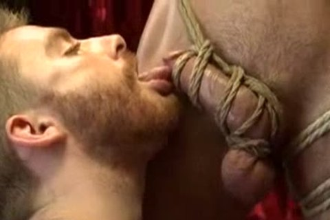 delicious chap Edged