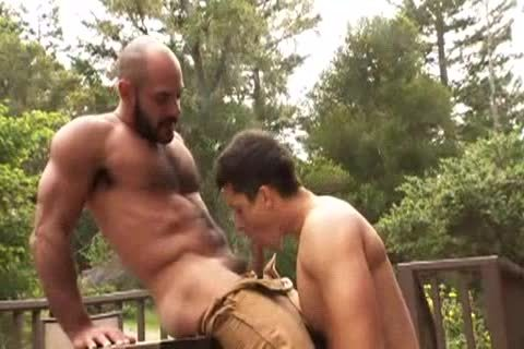 hairy Muscle Bald Bear pounds Jay Roberts