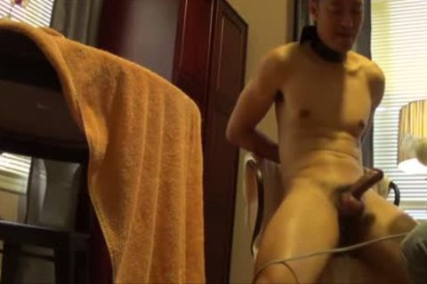 asian Buddy Is bound, Edged And Milked Dry.