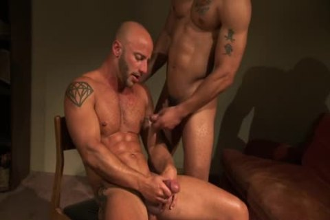 Bald pumped up Hunk came