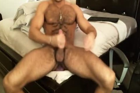 hairy Sean Zevran Dildos On cam And Cums Twice