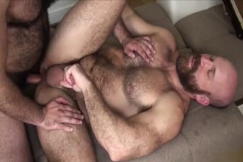 hairy Bear bareback And penis juice flow
