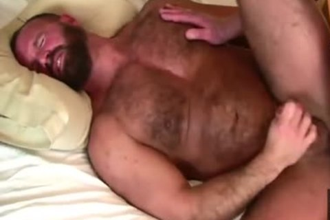 Daddy Bears dril In couch