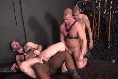 dark Attack Part 2 Dusty Redd Texas Bull And Dax