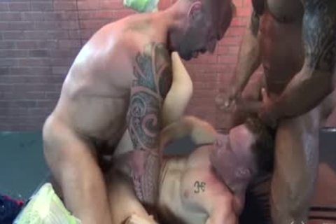 MUSCLE DADDYS couple BREED THOSE whore
