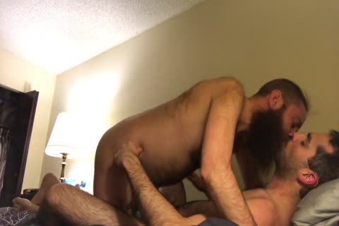 hairy lengthy Bearded Otter Kisses And suck His hairy bf