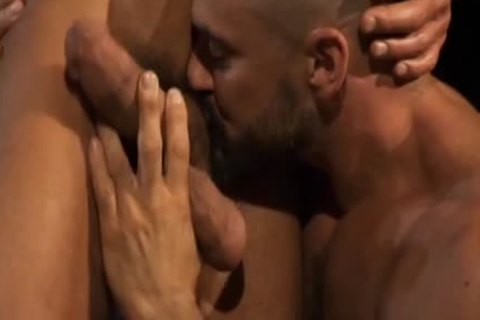 Hung: The Superlatively pretty Of David Anthony