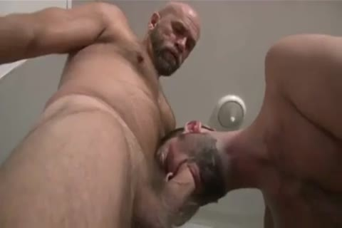 Bear shoves nakedback knob in hairy a-hole hole